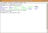 metasploit_install_16.PNG