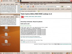 ubuntu-mrt-md5sum3.jpg