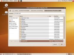 ubuntu-reglookup-startup3.jpg